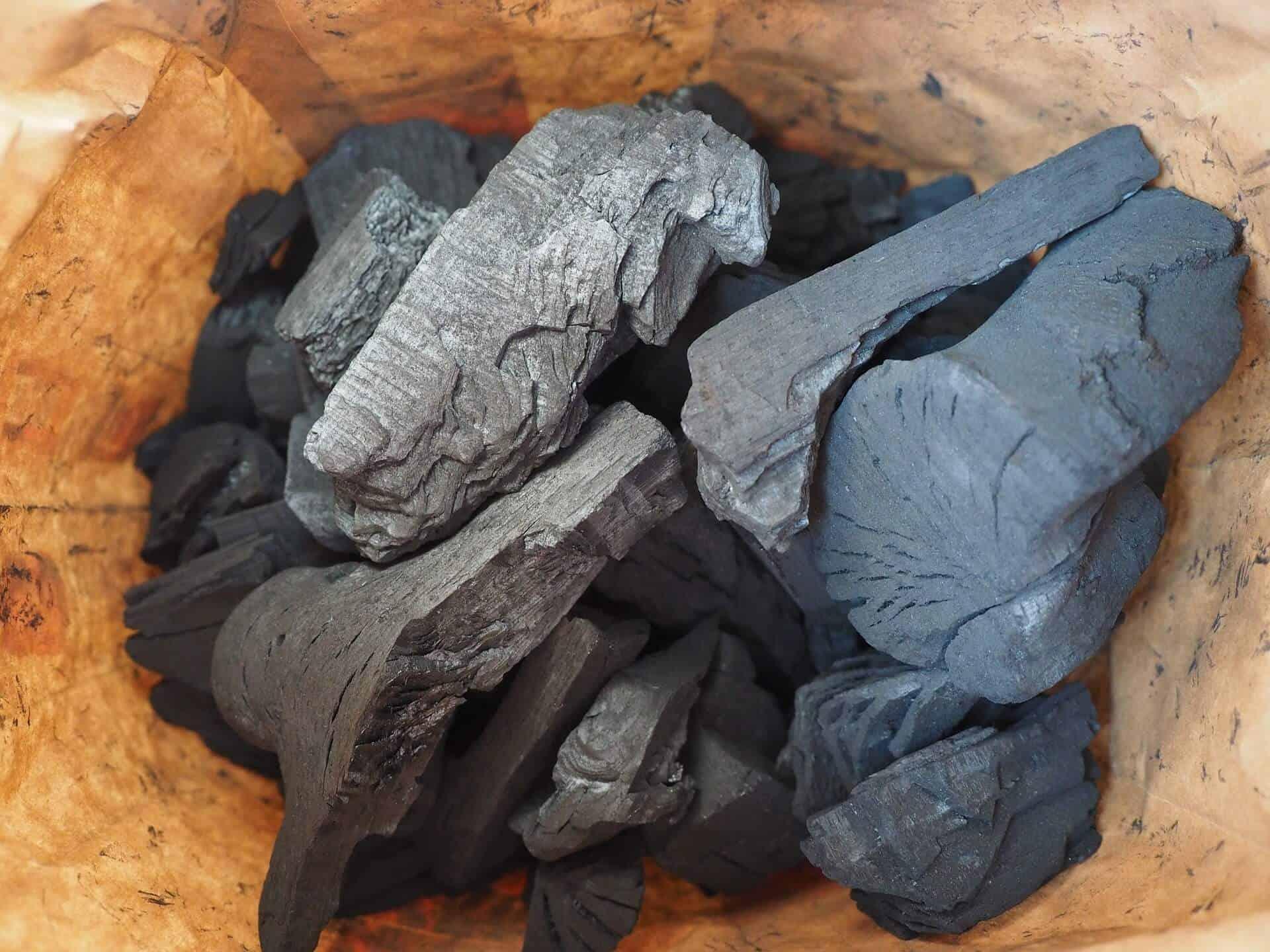 dog ate charcoal