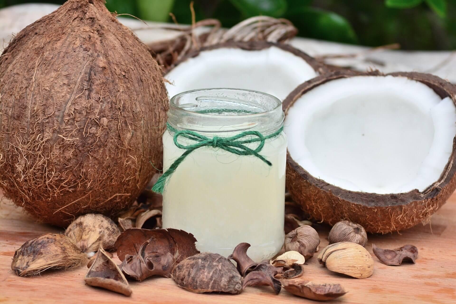 dog ate coconut oil
