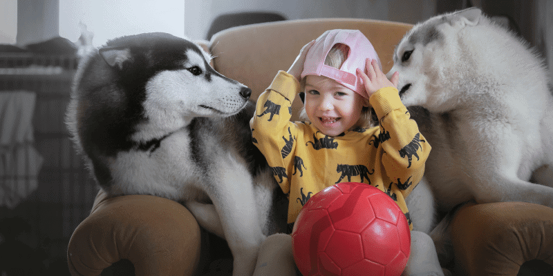 Are Huskies Good with Kids