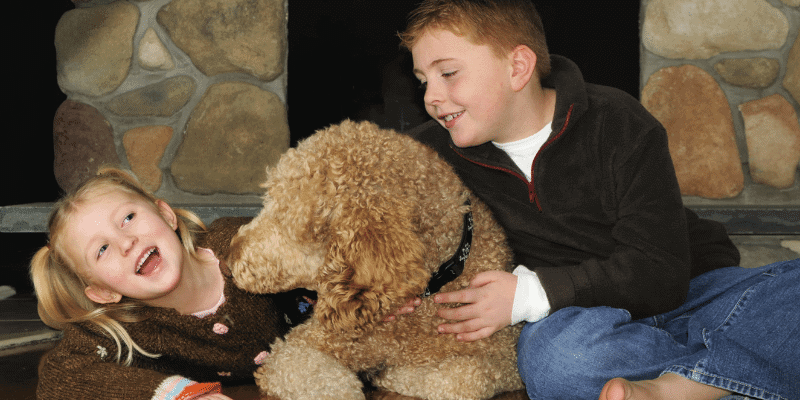 Are Poodles Good With Kids