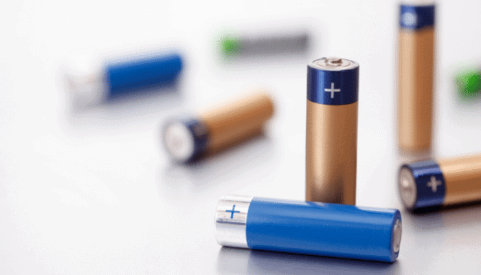What to do if Your Dog Ate a Battery