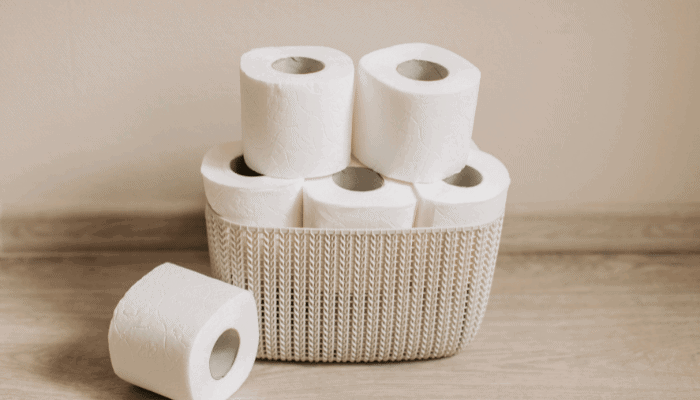 What to Do If My Dog Ate Toilet Paper
