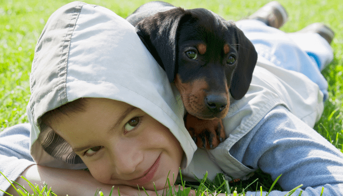 Are Dachshunds Good with Kids